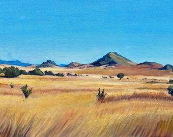 Hidden Antelope Landscape Print