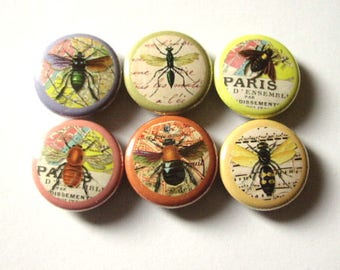 Insects Fridge Refrigerator Magnet Set nature bugs bee 1 inch party favor stocking stuffer flair button pins