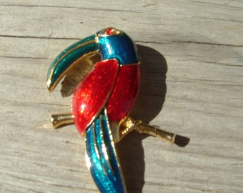 Large Toucan Brooch
