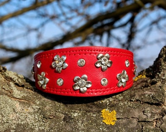Bright italian leather dog collar for Italian Greyhound, Whippet, Saluki
