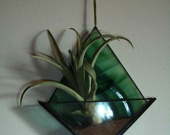 Stained glass air plant holder with pei red sand