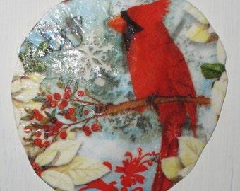 Cardinal Sand Dollar Ornament