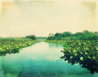 Water Lilies Lake Art Print - Aqua Green Vintage Dreamy Water Creek Lake House Decor Wall Art Photograph