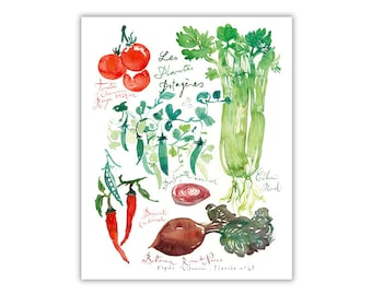 Watercolor vegetable chart poster, French kitchen wall art, Vegetable art print, Veggie painting, Food illustration, Foodie gift, Home decor