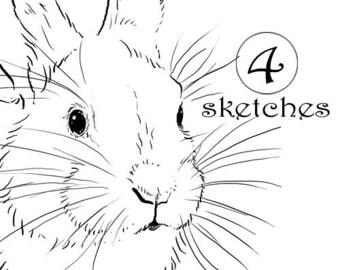 4 Bunny Rabbit Drawings | Clip Art Sketches | Digital Stamp or Clipart | DIY Printable | Digital Download jpg File | Cut & Paste Page