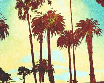 Palm Trees at sunset on Ocean Avenue, Santa Monica, California Sun Sidewalk Sunshine vintage grunge art photography photograph