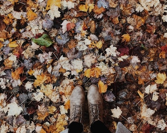 Fall Shoes Leaves Image | Styled Stock Holiday with blank space & leaves for Blogs Websites and Instagram
