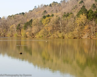 Springtime on Lake Dardenelle (Arkansas