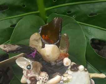 One of a kine seashell, driftwood and seaglass jewelry holder and flower vase. knick knack. Paper weight.