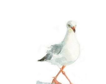 Watercolor Seagull II, Seagull II Print