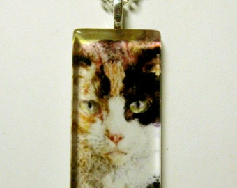 Calico cat pendant and chain - CGP02-066