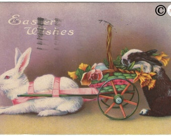 """Real-life White Easter Bunny and Black and White Easter Bunny in Basket Wagon """"Easter Wishes""""  Easter Greeting Vintage Postcard"""