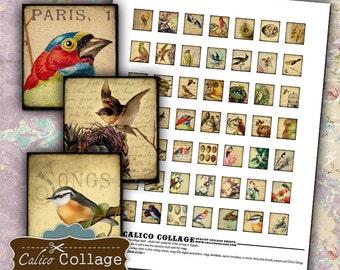 Vintage Birds Digital Collage Sheet Printable .75x.83 Scrabble Tile Size for Pendants, Magnets, Resin, Glass, Bezel Settings, Printables