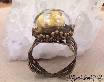 Globe Glass Bottle Ring, Half Round Glass Ring, Round Glass Ring, Bubble Ring, Miniature Bottles, Glass Dome Ring, Antique Bronze, RB2002