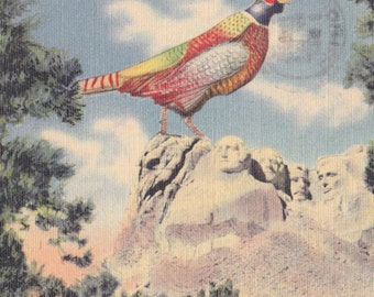 SOUTH DAKOTA POSTCARD, Mt. Rushmore and Pheasant, 1947, Color Linen, Vintage Travel Ephemera