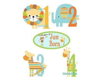 Baby Monthly  Iron On  Transfers - Cute  Animal Cutouts 1 thur 12 months  Plus JUST BORN Q1