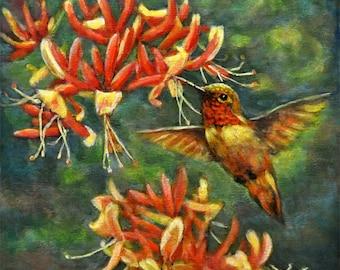 Hummingbird with Honey Suckles 6