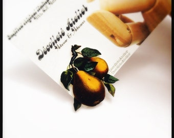Pair of Pears Magnetic Pin - Wearable Pear Fruit Tree Colour Illustration Brooch