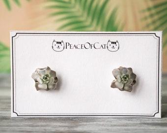 succulent jewelry , succulent earrings , cactus jewelry , cactus studs , desert earrings , desert jewelry , succulent jewelry