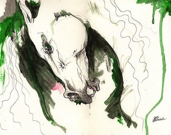 Wild horse, equine art, equestrian portrait,  ink and acrylic painting on paper