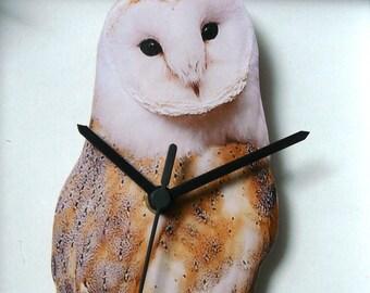 OWL,WALL CLOCK,bird,bird of prey