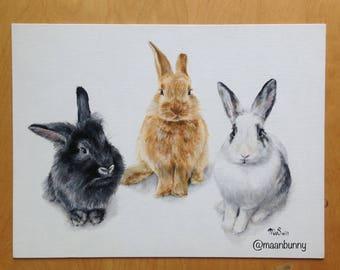 custom pet portrait of three pets