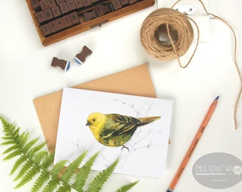 Mohua - Yellowhead bird folded card from the New Zealand native birds series by Emilie Geant, from original watercolor painting