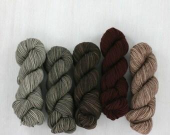 MINI SKEIN set: FAVE sock