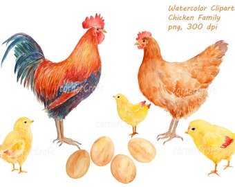 Watercolor clipart - hand drawn Chicken family rooster, hen, chicks and eggs printable instant download