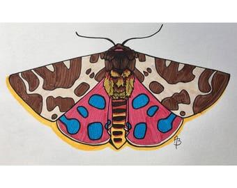 Vibrant Shadow Moth Print