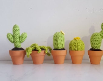 Mini crochet cacti and succulents