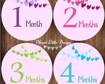 Monthly Baby Girl Stickers, Milestone Stickers, Month Stickers, Baby Month Stickers, Baby Stickers #123