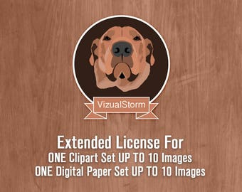 Extended License Agreement For Clipart Set UP TO 10 Graphics or Set Of 10 Digital Papers
