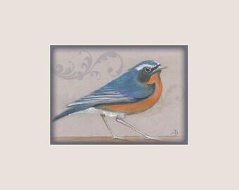Download, Digital art, Soft Pastel colors,Drawing & drafting, Beige digital frame, Orange, Blue,Wall Décor, 300dpi, Himalayan Bluetail/bird