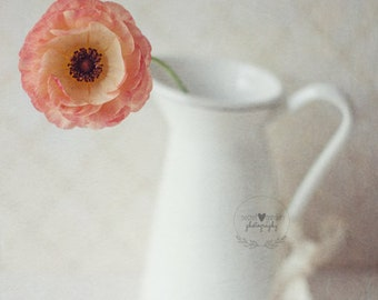 ranunculus spring summer flower colour photo print - whimsical fine stilllife nature photography, peach, pastel, floral, gift for her