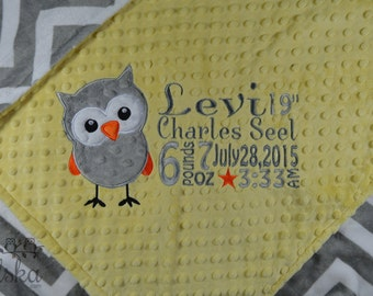 Personalized Baby Blanket, Minky Blanket, Personalized Birth Stats Blanket, Baby Blanket, Owl Blanket, Choose your Colors, Choose Your Size