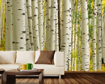 Birch Forest Wall Mural Decal -- 4 Panels