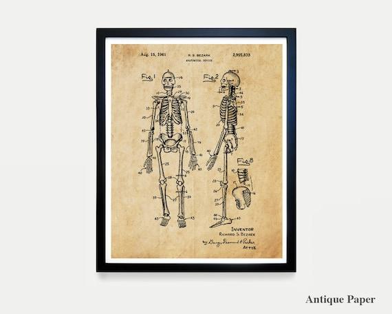 Anatomical Skeleton Patent Art - Skeleton Poster - Skeleton - Anatomy Poster - Anatomy Art - Bones - Medical Art - Spine - Vertibrae