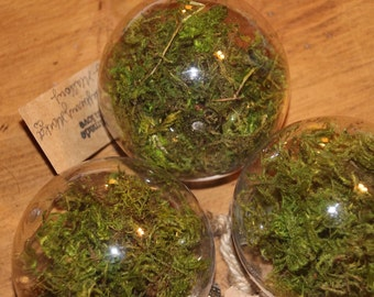 3 Moss ornaments/ Accents