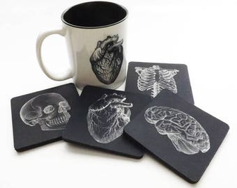 Drink Coasters and Coffee Mug Gift Set Anatomy physician assistant doctor male nurse anatomical heart goth biology white coat ceremony skull
