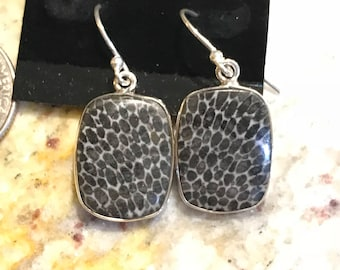 Fossilized Stingray Coral Earrings