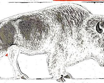 Vintage Buffalo Print
