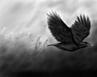 Print of my digital art painting, crow, black and white