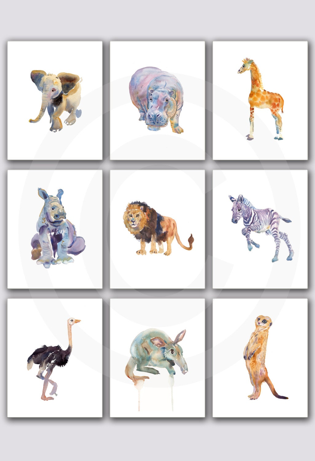 zoom - Animal Painting For Kids