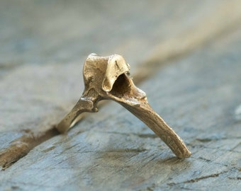 Fox Vertebra Ring