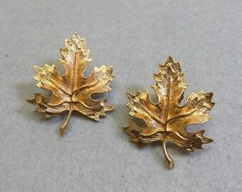 Vintage Big Bold Golden Maple Leaf Pierced Earrings