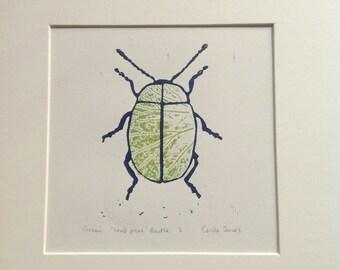 Green 'leaf print' beetle.