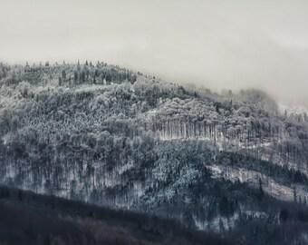 Winter Landscape - Beskidy Mountains