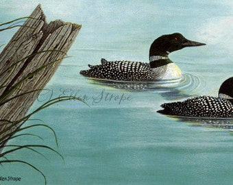 GICLEE Print, Common Loons, loon decor, bird decor, birds, water, Ellen Strope, bird art, prints