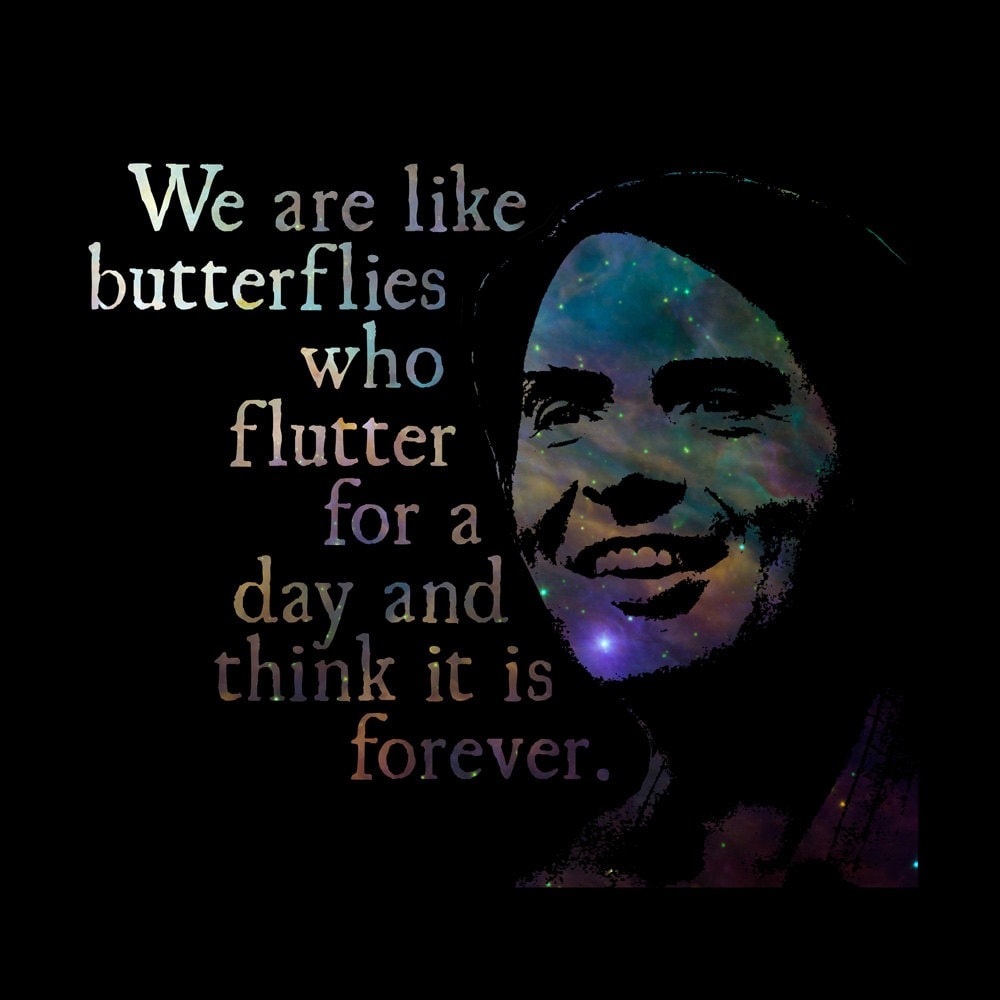 Carl Sagan Love Quote We Are Like Butterflies Carl Sagan Quote Quotable Universe